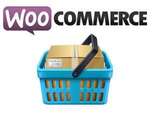 WordPress met WooCommerce webshop